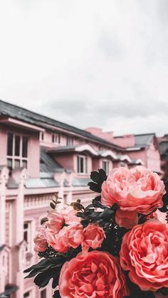 """""""Uploaded by Diana Butera"""" Flower Phone Wallpaper, Cute Wallpaper Backgrounds, Pretty Wallpapers, Nature Wallpaper, Photo Wallpaper, Wallpaper Wallpapers, Aesthetic Pastel Wallpaper, Aesthetic Backgrounds, Aesthetic Wallpapers"""