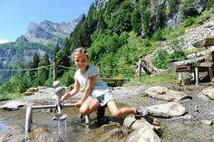 Zwerg-Bartli-Erlebnisweg | Braunwald Mountains, Nature, Travel, Dwarf, Tours, Switzerland, Forests, Get Tan, Naturaleza