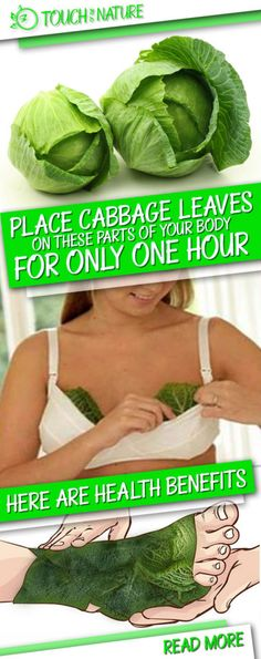 Cabbage leaves operate like a magnet for a lot of ailments within the physique. Furthermore, the cabbage could be very useful for treating particular situations akin to thyroid gland issues, compli…(Food Recipes To Try) Health Tips, Health And Wellness, Health And Beauty, Health Fitness, Beauty Skin, Natural Home Remedies, Natural Healing, Autogenic Training, Sante Bio