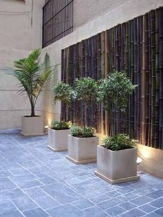 18 contemporary planter boxes designs 00007 You are in the right place about Garden Planters patio Here we offer you the most beautiful pictures about the Garden Planters diy you are looking for. Diy Planters, Planter Boxes, Garden Planters, Back Gardens, Outdoor Gardens, Planter Box Designs, Landscape Design, Garden Design, Contemporary Planters