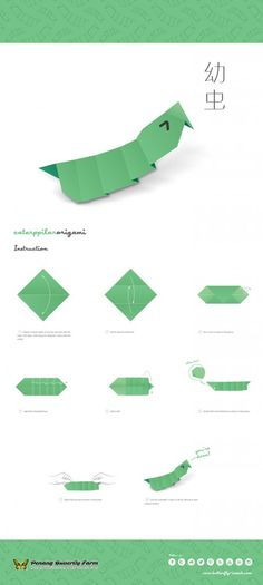 Butterfly Metamorphosis Origami: egg, chrysalis, catepillar
