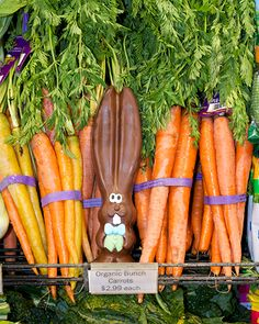 It's a rabbit's dream come true. #allears #Easter