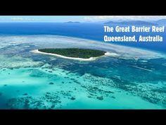 """Australien: Forschungs-""""Praktikant"""" am Great Barrier Reef   traveLink."""