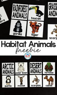 Free Habitat Puzzles! The perfect addition to your science lesson plans. This free science printable is great for preschool, kindergarten, and first grade students. #animalhabitats #animalactivities