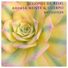 Sesiones de Reiki en Centro Ahimsa Mente & Cuerpo ☯ Dirección: Pasaje de Dolores, 14 (a 5 minutos del metro Alfonso XIII)
