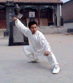 Chen Style Taijiquan (Tai Chi) CHEN BING