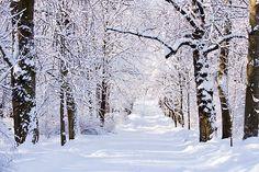 winterse sferen