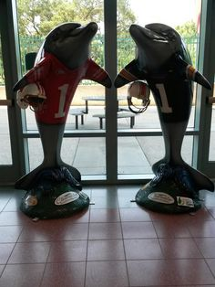 2015 Outback Bowl dolphins located at Clearwater Main Library Cafe, 100 N. Osceola Ave., Clearwater FL   #ClearwatersDolphins artist:  Robert Daltry   owner:  Clearwater Gas System