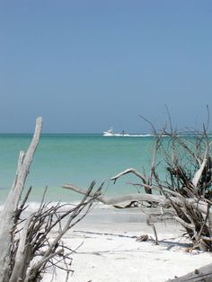 Welcome to Longboat Key!  Home away from home,
