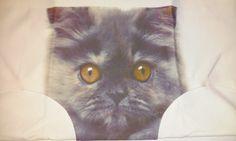 Cat Print Underwear | ... Panties Sexy Lingerie Underwear Cat Print Briefs ON SALE NOW!!! 1.99