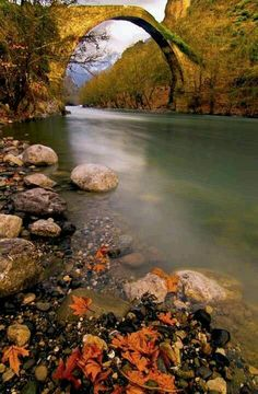 Autumn river rocks