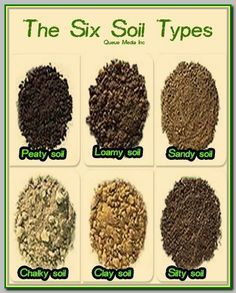 Brief discussion of six common soil types (peaty clayish silty sandy chalky and loamy) and how to identify them Compost Soil, Garden Compost, Garden Pests, Worm Composting, Vegetable Gardening, Garden Types, Organic Gardening Tips, Types Of Soil, Growing Plants