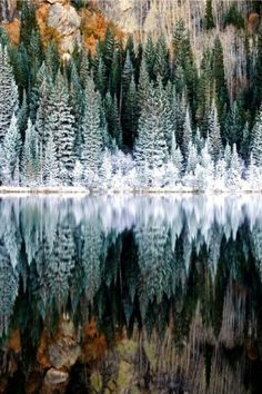Continental Divide, Rocky Mountain National Park, Colorado, United States of America | #lifeadvancer | www.lifeadvancer.com