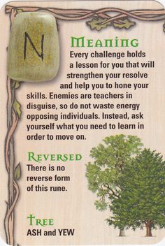 Reading the rune stones. Wicca Runes, Celtic Runes, Norse Runes, Futhark Runes, Elder Futhark, Viking Runes, Norse Mythology, Viking Symbols, Rune Divination