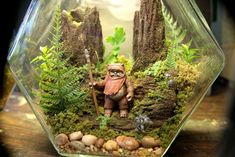 Ewok Terrarium World - Star Wars - Forest of Endor - Return of the Jedi Terrarium Diy, Star Wars Crafts, Ewok, World Star, Air Plants, Indoor Plants, Green, Diys, Tree Trunks