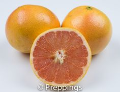 Grapefruit - Search by flavors, find similar varieties and discover new uses for ingredients @ preppings.com