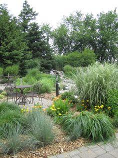 Gardens surrounding the Silver Birch tea room