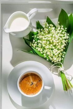 Pildiotsingu may france muguet tulemus Coffee Vs Tea, I Love Coffee, Coffee Cafe, Coffee Break, Morning Coffee, Momento Cafe, Café Chocolate, Coffee Flower, Pause Café