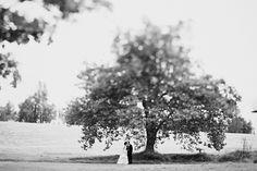 far away shot w/ tree via Michele M. Waite photography