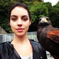 Because hawking is serious business #MillytheHarrisHawk #seriouslyseriously #whaaat