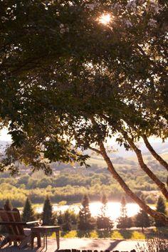 <3 Healdsburg! Best hidden treasure in CA Wine Country.