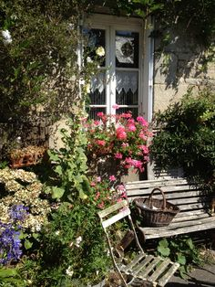 Making a window a 'feature' in your garden...