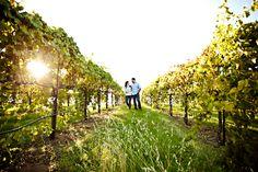 Winery Engagement Shoot - Jacqueline Photography
