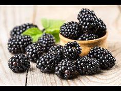 Ежевика «Блэк Меджик»: ягоды черные, глянцевые, крупные, овально-вытянутой формы, плотные. Вкус десертный, хорошо сбалансирован дуэт сахара и уместных кисловатых нот (в патентном описании упоминаются напоминание черной смородины). Аромат ярко выражен, приятный.