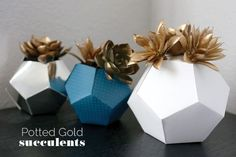 Potted Gold Succulent in Geometric Origami Planter - 22 Amazing DIY Pot Ideas