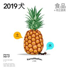 Lucky food 2019 - Food trends for the Year of the Pig 2019 - KarmaWeather Dog Zodiac, Lucky Food, Chinese Astrology, Year Of The Pig, Dog Years, Food Trends, Chinese New Year, Chinese New Years