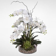 Shop for Real Touch White Phalaenopsis Orchid with Succulents and Natural Rocks in a Glass Pot.. Get free shipping at Overstock.com - Your Online Home Decor Outlet Store! Get 5% in rewards with Club O!