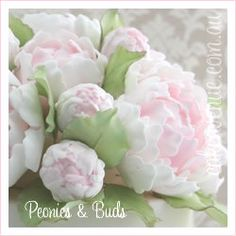 Gumpaste peonies and buds.