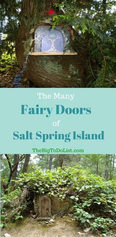 With all the fairy doors Salt Spring Island has, you're sure to have a magical time exploring. Find several spots to check out the elf villages and fairy doors here. Sunshine Coast, Salt Spring Island Bc, Bora Bora Activities, Lanai Island, Where Is Bora Bora, Victoria, Fairy Doors, Philippines Travel, Places