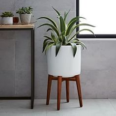 Mid-Century Turned Wood Leg Planters - Patterned | west elm AU