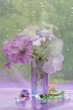 Heart Wallpaper, Flower Wallpaper, Good Morning Beautiful Flowers, Flower Aesthetic, Arte Floral, My Flower, Hydrangea, Flower Arrangements, Glass Vase