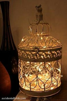 A beautiful bird cage filled with fairy lights. What a fantastic lamp! Bird Cages, Paper Lanterns, My New Room, String Lights, Twinkle Lights, Fairy Lights, Bird Houses, Floor Lamp, Light Up