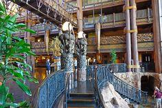 Disney Deluxe Resort best - Disney's Animal Kingdom Lodged. Nice video of lodge