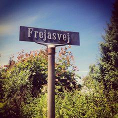 Frejasvej.