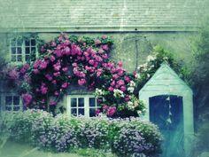 Cornish cottage..my heritage also