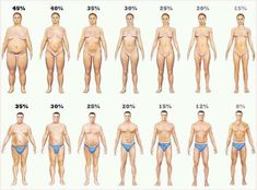 Razlike: tip građe i procenat telesnih masti