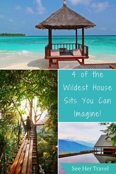 Not your average house sits, these 4 wild house sitting tales from experience house sitter and blogger Ryan will have you itching for adventure in the furtherest cornered os the house sitting world! | #housesitting #travel #traveltips #travelblogger #travelinspiration | travel tips | house sitting tips | budget travel | cheap accommodation tips | travel inspiration