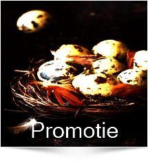 Vand prepelite Bucuresti Eggs, Breakfast, Food, Morning Coffee, Eten, Egg, Meals, Morning Breakfast, Egg As Food
