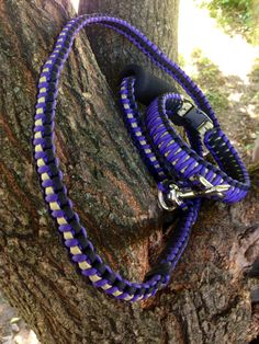 Paracord collar and leash ~ Enforce Survival Bands