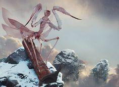 Highspire Mantis - MtG Artwork