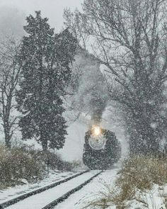 Train driving in the snow storm
