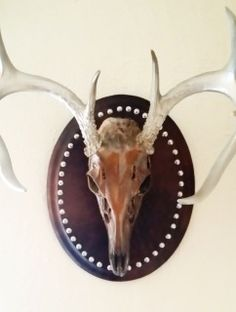 This real 8 pt deer skull was coated with black iron paint, rusted, then clear coated. The horns are painted silver and clear coated. This is one of a kind handmade piece that would be a stunning addition to any home. Deer Skulls, Animal Skulls, Skull Art, Taxidermy, Spice Things Up, Horns, Rust, Christmas Ornaments, Wall