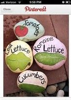 Image result for pinterest painted rock gatden markers for corn, beans,