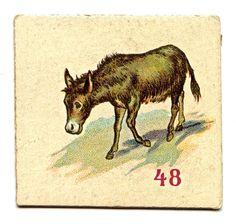 animalcarddonkeygfairy002.jpg (850×809)