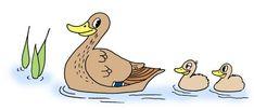 Lintutapahtuma kouluille, päiväkodeille, perheille ja muille lapsiryhmille! Tapahtuman tarkoituksena on tutustua lintuihin ja lintuharrastukseen etsimällä merkkejä lintujen pesinnästä. Kannustamme kaikkia lapsiryhmiä lähtemään linturetkelle! Tarjolla on runsaasti maksutonta materiaalia ryhmänvetäjän tueksi. Science For Kids, Disney Characters, Fictional Characters, Nature, Opi, Outdoors, Children, School, Birds