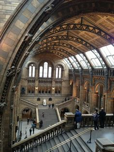 Twitter / iamalexanders: @NHM_London Never fails to ...